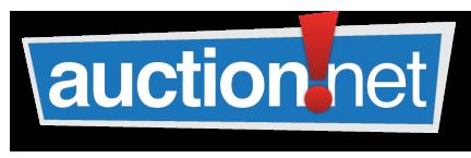 auction net logo.png